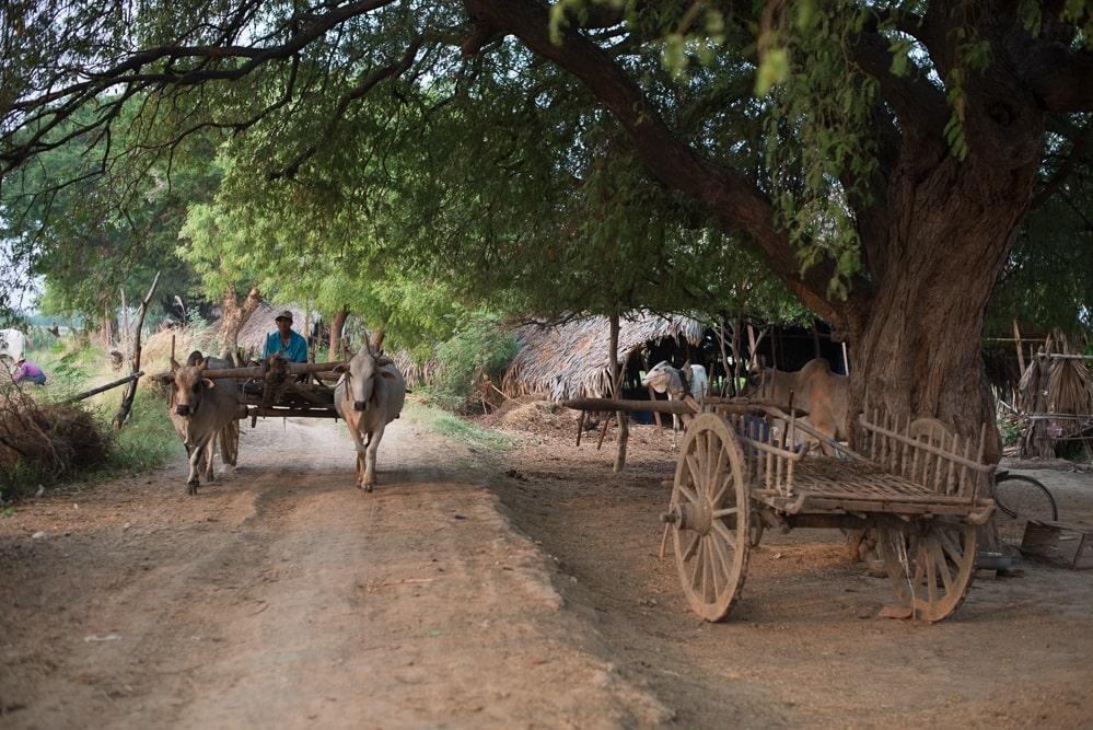 Myanmar-min
